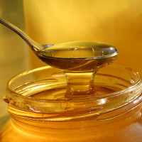 Honey suppliers the Garden Route